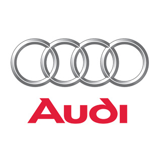 Para Audi